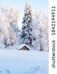 Snowy Winter Landscape Of...