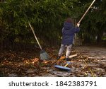 A Small Child Collects Fallen...