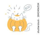 Halloween Cat Costume  Cute Cat ...