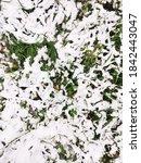 white melting snow lying on... | Shutterstock . vector #1842443047