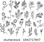 big set of hand drawn floral...   Shutterstock .eps vector #1842717847