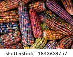 Colorful Cobs Of Ornamental...