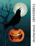 halloween  halloween wallpaper  ... | Shutterstock .eps vector #1844208811