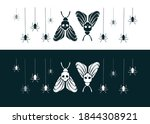 Bicolor Set With Moths And...