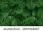 jungle exotic composition...   Shutterstock . vector #1844368687
