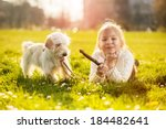 Stock photo little girl playing with her puppy dog in the park 184482641