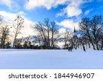 Skeletal Winter Trees With Bird ...