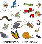 Set Of Cartoon Invertebrate...