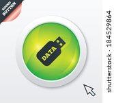 usb stick sign icon. usb flash...