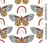 insects butterfly and rainbow...