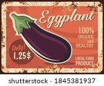 eggplant vegetable metal plate...   Shutterstock .eps vector #1845381937