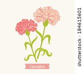 Floral greeting card. C for Carnation.
