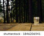 Dark Coniferous Forest. An...