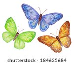 Abstract Exotic Butterflies Se...