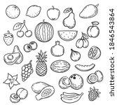doodle fruits. hand drawn... | Shutterstock . vector #1846543864