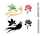red ginseng emblems.... | Shutterstock .eps vector #1846732774