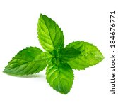 fresh mint isolated on white... | Shutterstock . vector #184676771