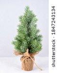 A Small Plastic Christmas Tree...
