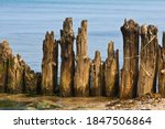 Wooden Stakes By The Sea In...