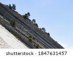 Massive Gray Rocks With Trees...