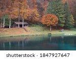 Natural Autumnal Landscape ...