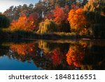Landscape In Autumn Shore Of...