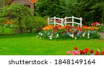 grass and tulips flowerbed to...   Shutterstock . vector #1848149164