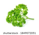 Parsley Leaf Or Petroselinum...