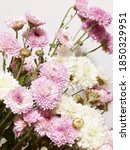Bouquet Of Chrysanthemum...