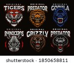 a bundle of colorful badges of... | Shutterstock .eps vector #1850658811