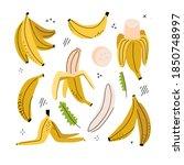 banana  banana slice  peeled... | Shutterstock .eps vector #1850748997