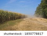 Countryside Road With Dust In...