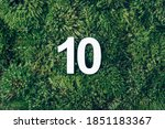 Green grass  digit ten....