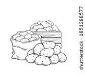 potato tubers outline hand... | Shutterstock .eps vector #1851288577