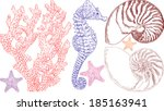 vector illustration of sea life ...