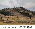 Montana Hillside Landscape With ...