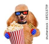 dog watching a movie | Shutterstock . vector #185213759