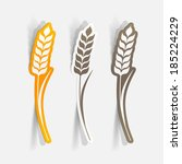 Realistic paper sticker: Ears of wheat. Isolated illustration icon
