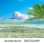 turquoise sea sky coconut palm   Shutterstock . vector #185232449