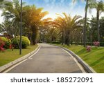 walkway in a beautiful park... | Shutterstock . vector #185272091