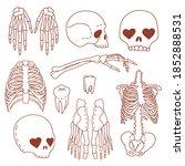 set of line art human body... | Shutterstock .eps vector #1852888531