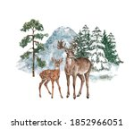 Watercolor deer and doe illustration. Winter forest background with pine and spruce snowy trees and mountain. Hand painted Christmas design template with evergreen woods and north wild animals.