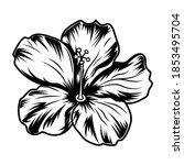 Retro Hibiscus Flower Vector...