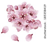pink cherry blossom  sakura... | Shutterstock .eps vector #185358419