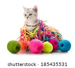 Stock photo the grey beautiful little kitten play with many multi coloured clew on white background 185435531