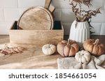 autumn still life. white and... | Shutterstock . vector #1854661054