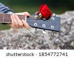 Close Up Of Guitar Headstock...