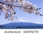 mount fuji  japan | Shutterstock . vector #185496755