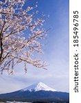 mount fuji  japan | Shutterstock . vector #185496785