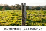 Barbed Wire And Wood Post Fence ...